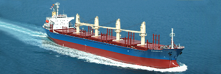 Bulk carrier of 20300 DWT typical product of Imabari Shipyard, Japan now will be built for Ince Shipping of Turkey