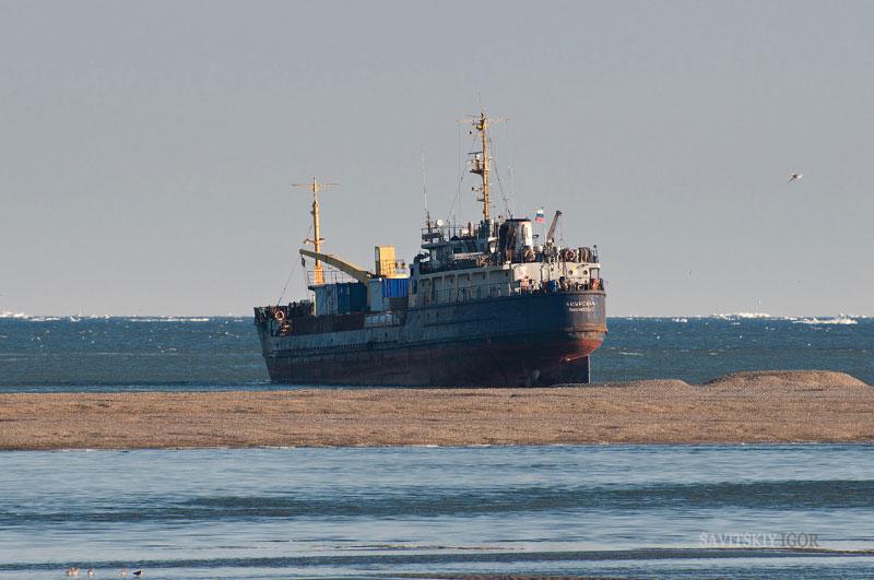 General cargo vessel Amurskaya IMO 7313614, dwt 611, built 1973, flag Russia. F/v Amurskoye IMO 9075840, displacement 2829 tons, built 1992, flag Russia. On a photo from shipspotting.com freighter Amurskaya in distress, aground off Kuhtui river esturary, Okhotsk, Okhotsk sea, photo by Savitskiy Igor, http://forum.shipspotting.com/index.php?action=profile;u=74230
