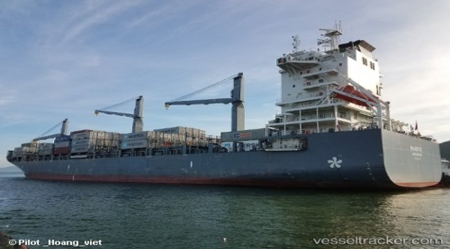 Containership Majestic arrested by order of the local High Court