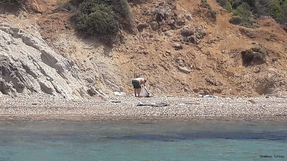 2018/06/great-environmental-cleaning-campaign-in-turkeys-aegean-holiday-resort-ayvalik-20180612AW41-6.jpg