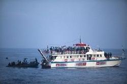 'Probable delay' hits Lebanon all-women aid ship to Gaza