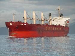 Chinese bulk carrier capsized and sank in South China sea, 8 missing