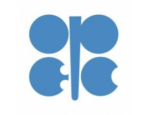 OPEC stand to hurt oil importing countries