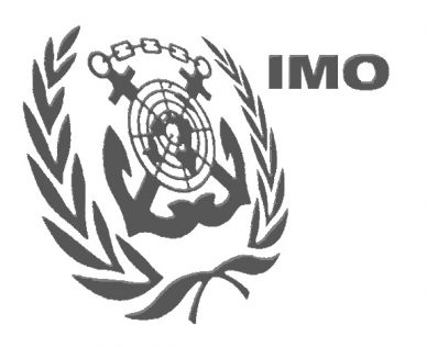 IMO okays contingency guidelines against piracy