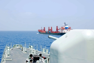 NATO Shipping Center weekly assessment - 14 January 2011