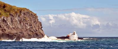 Environmental disaster at Nightingale Island