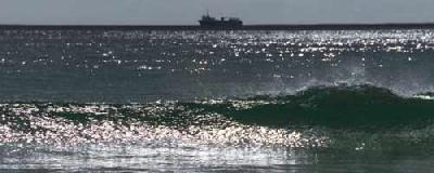 Maritime industry must address green future, say shipping giants