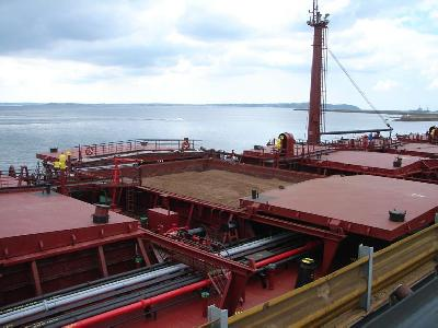 Dry Bulk Shipping Market Hit by Oversupply and Slower World Trade
