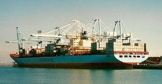 MSC's extends slot charter with Maersk, Hamburg Sud on Oceania loop 2
