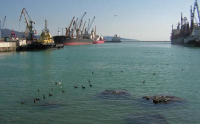 Russia: Novorossiysk Commercial Sea Port Announces Crane Upgrade