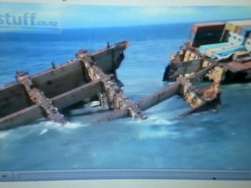 Daina Shipping fined with another 300000 Dollar
