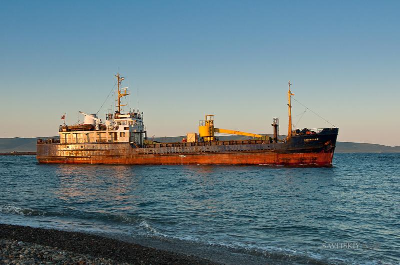 """Shifting cargo may have caused ship loss """"Amurskaya"""""""