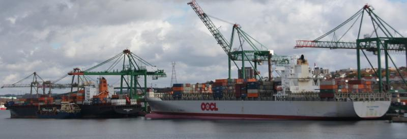 Diverted hurricane-struck US cargo triples Port of Halifax throughput