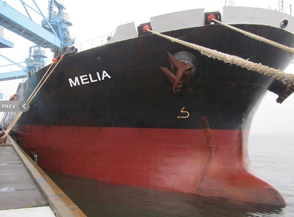 Diana Shipping Inks Charter Contract for 'Melia' Bulk Carrier (Australia)