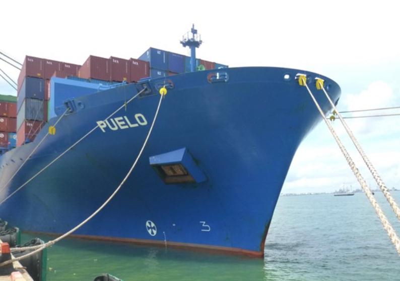 Greece: Diana Containerships Takes Delivery of MV Puelo