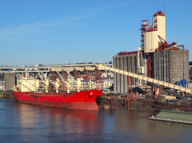 Grain activity lends support to Panamax freight rates; oversupply weighs
