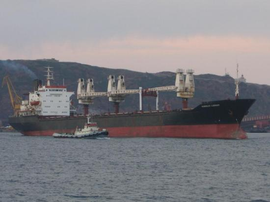 Chinese ship owners on the look for tonnage between 10 and 20 years old