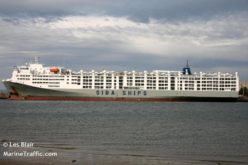 840 sheep died on board of livestock carrier Ocean Drover