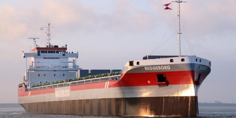 Ferus Smit Delivers MV 'Reggeborg' to Royal Wagenborg