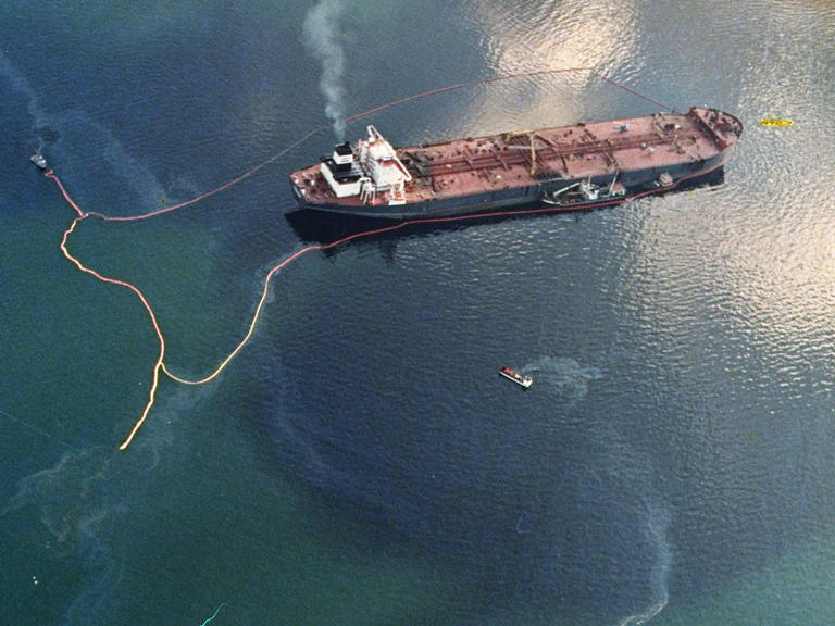 25 years after Exxon Valdez, some damage heals, some effects linger in Prince William Sound