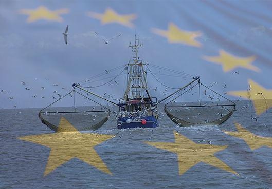 EU Sets Up Sustainable Fishing Model