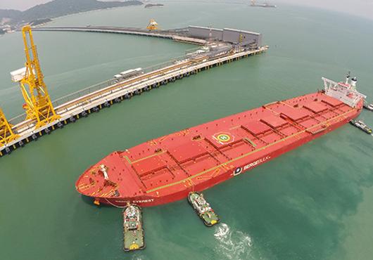China Eyes Iron Ore Shipping Partnership with Vale