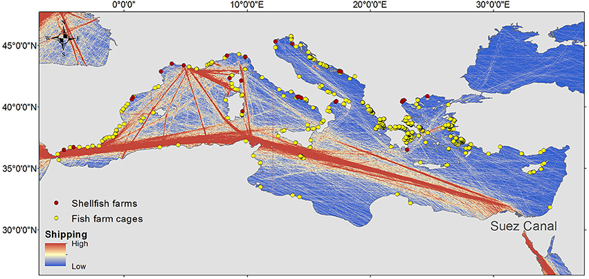 Mediterranean hosts 13pc of world shipping, Italian study finds