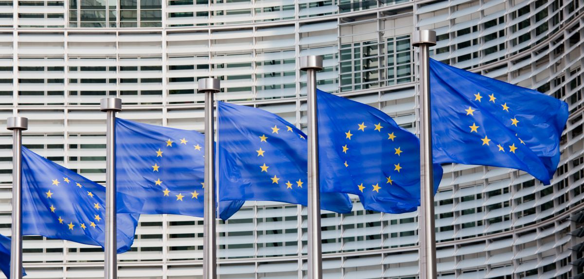EU industry lobby wants trade safeguards against China to stay in place