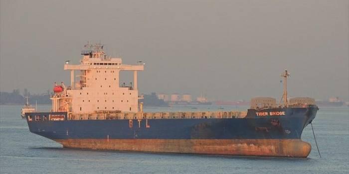 Euroseas scraps 2,228-TEU Tiger Bridge containership for $2.9 million