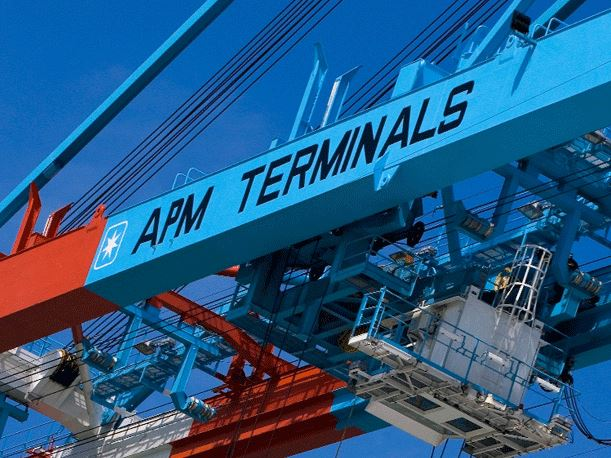 Cyberattack on Maersk's global systems has knock-on effect on APMT Mumbai