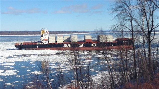 Box ship designed for St Lawrence River has market potential