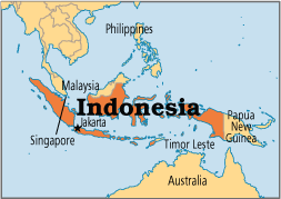Indonesia to retain ban on foreign ownership of ports and airports