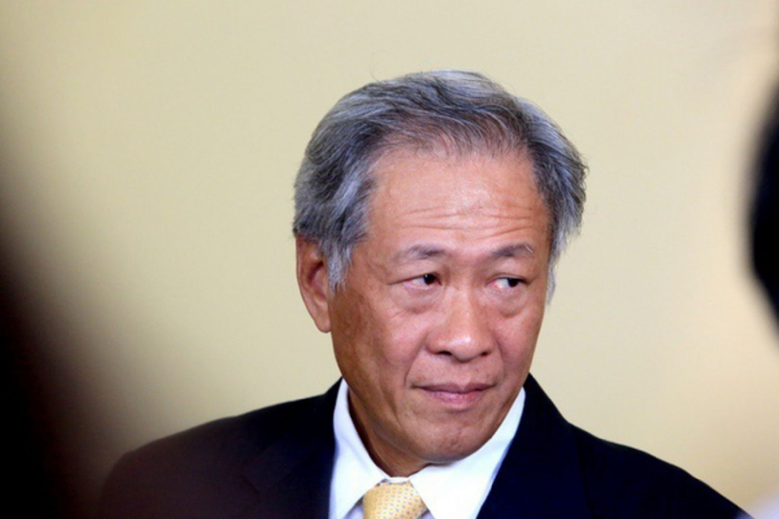 Singapore minister fears crisis in July 12 Hague ruling on South China Seas