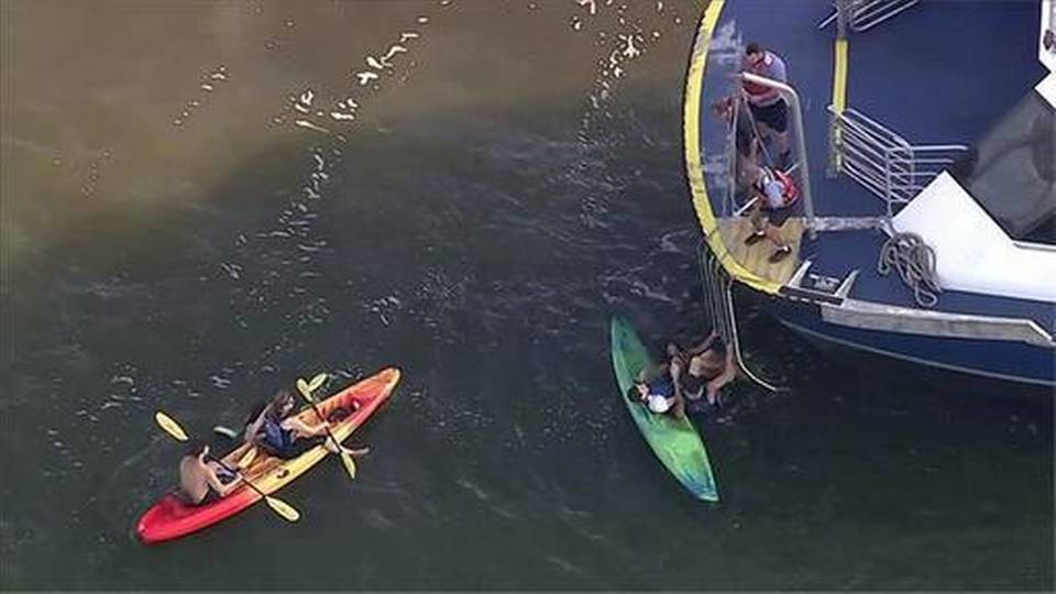 Police: 5 injured when ferry hits kayakers on Hudson River