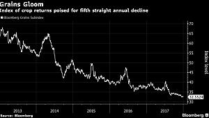 Grains Post Worst Losing Streak Since 1992