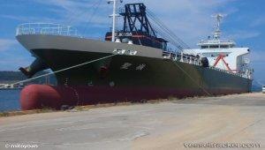 Grounding in Kamnon port