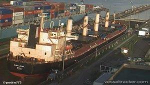 Pakistani bulk carrier sunk Thai fishing vessel, 4 missing