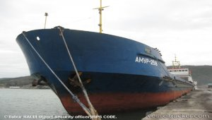 Cargo ship grounded on Don