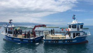 Salmon exported from Trabzon to the rest of the world