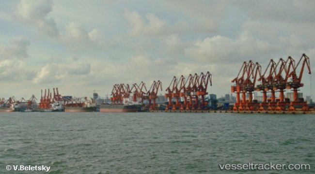 Port restrictions in China disrupt berthing