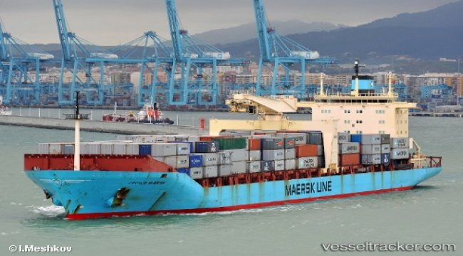 Helsman of fishing vessel fell asleep before collision with boxship