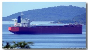 Capesizer Five Stars Fujian sold at auction