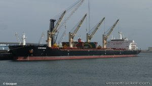 Cheshire report prompts calls for IMO to act decisively.