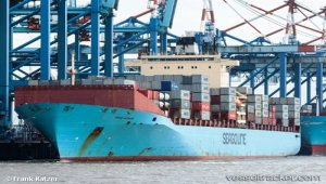 Maersk's regional carriers go to market under one brand