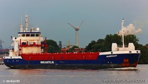 Rudder failure in Kiel Canal