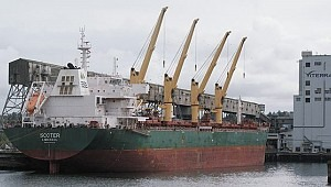 Baltic-ARA coal freight rate hits 2-year high on winter rush, rising demand