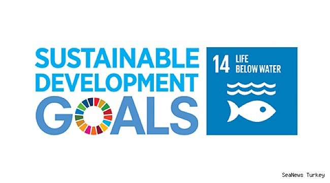 IMarEST publishes its progress towards supporting UN SDG 14 – 'life below water'