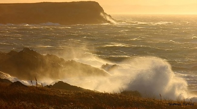 Newfoundlanders worried, but hopeful, about the state of the ocean