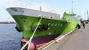 Japan-flagged cargo ships Sensho Maru and Sumiho Maru collided, three missing