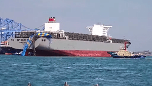 Containership Milano Bridge allided with cranes in Busan, one injured